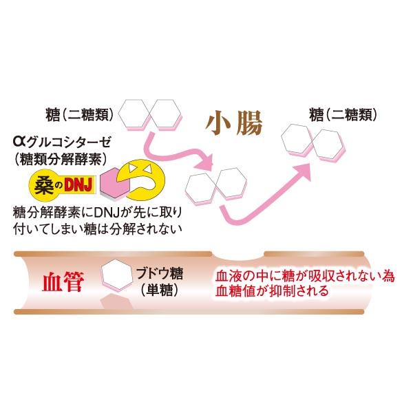 N-68 桑の葉茶粉末 効果